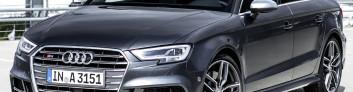 Audi S3 Sedan (2017-2018) на IronHorse.ru ©